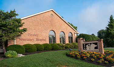Hershey Veterinary Hospital exterior building front